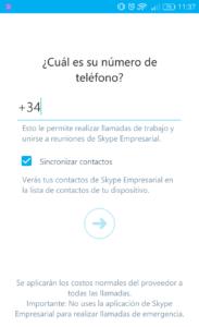 Skype (11)