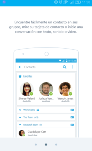 Skype (13)